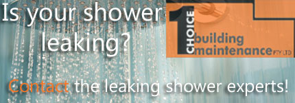 Shower Repairs Blacktown