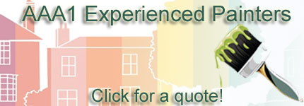 Experienced Painter Welland