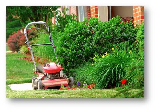 Garden Maintenance Moorabbin