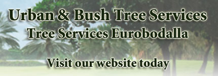 Tree Services Eurobodalla