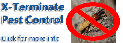 Pest Control Seaford