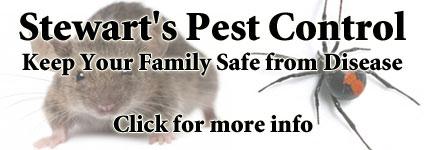 Pest Management Preston