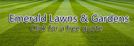 Pressure Cleaning Eastern Suburbs