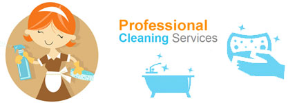 House Cleaning Braddon