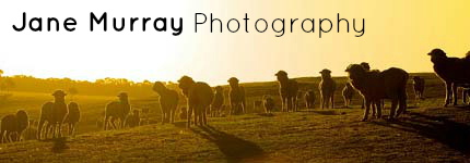 Family Portraits Wimmera