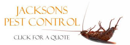 Pest Control Chirnside Park