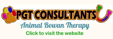 Pet Consultants Bongaree