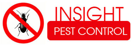Pest Management Coogee