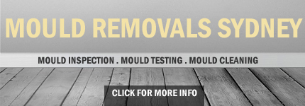 Mould Removals
