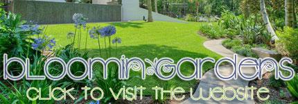 Grass Cutting Palm Park