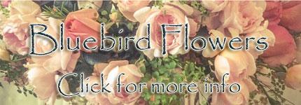 Florist Katoomba