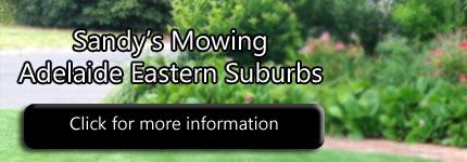 Lawn Mowing Rosslyn Park