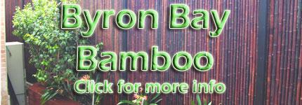 Bamboo Nursery Sydney CBD