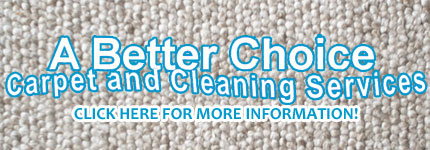 Carpet Cleaning Bentleigh