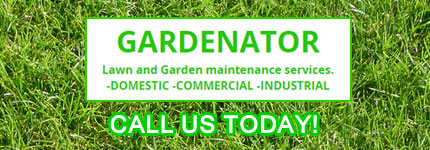 Garden Maintenance Oakleigh