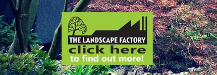 Landscaping Services Eltham