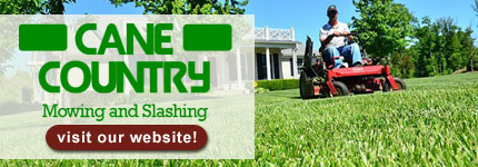 Commercial Mowing Clairview