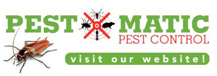 Pest Management Kensington