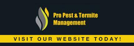 Pest Control Hoxton Park