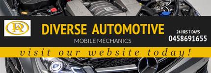 Auto Electrical Services Macarthur