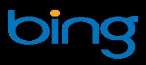 bing search review