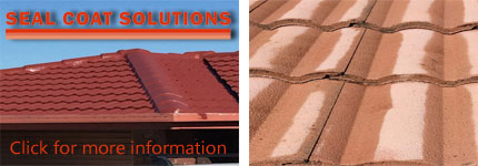 Roof Painting Wynnum West