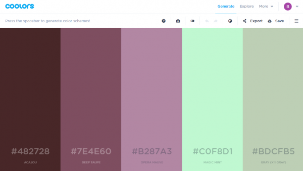 coolors-colour-palleting-web-app-online