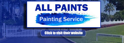 Roof Painting Durack