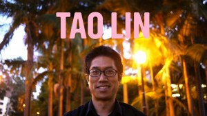 Tao-Lin-Alt-Lit-internet-writing