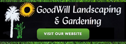 Garden Services Mosman