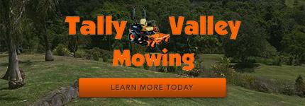 Acreage Mowing Mudgeeraba