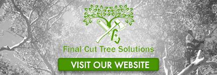 Tree Removal Morphett Vale