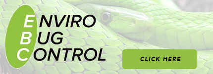 Snake Repellers Currumbin
