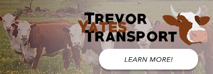 Livestock Transport Muswellbrook