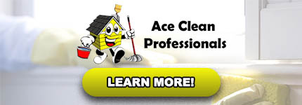 Oven Cleaning Gisborne